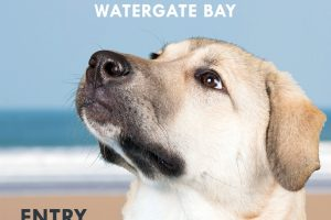 DOG SHOW POSTER 2018 watergate bay 300x200 - Watergate Dog Show on the Beach - 14th July