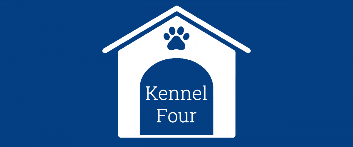 Kennel 4 01 1200x500 - Kennel 4