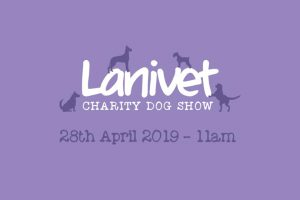 52605213 1015356548663629 5413561596616114176 n 300x200 - Lanivet fun dog show 28th April