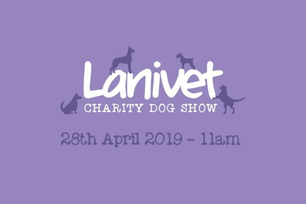 52605213 1015356548663629 5413561596616114176 n 600x400 - Lanivet fun dog show 28th April