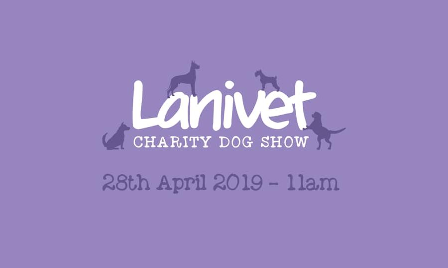 52605213 1015356548663629 5413561596616114176 n 900x540 - Lanivet fun dog show 28th April