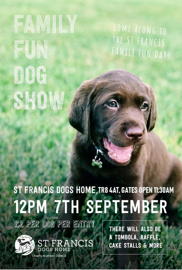 OPENDAYPOSTER2019 692x1024 - St Francis Family Fun Day and Dog Show